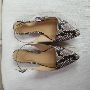 Michael Kors 5.5 flat animal print sandals